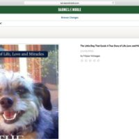 The Little Dog That Could, Becomes a Bestselling Book on Barnes and Noble